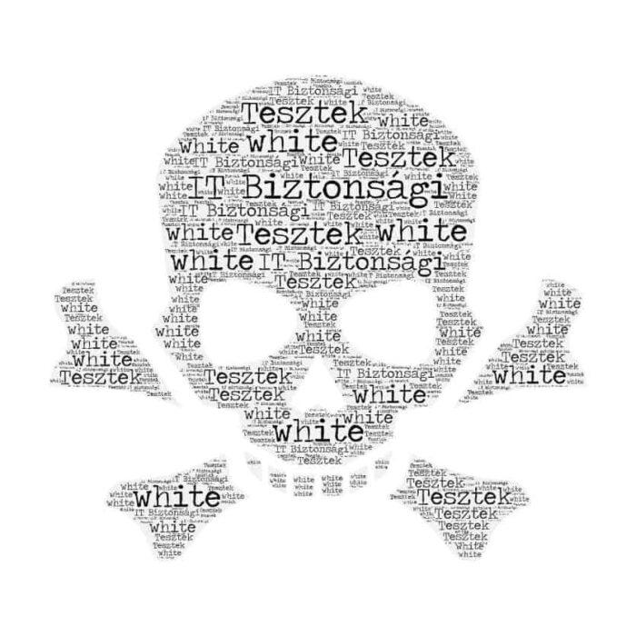 IT Biztonság White